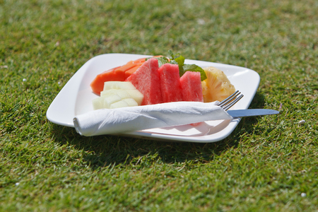 fruits on the plate on grass