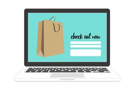 check out: shopping online on check out now page with shopping bag