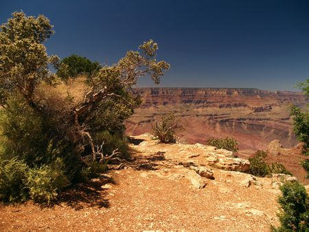 Panorama of Grand Canyon, Arizona, USA Stock Photo - 3871471