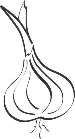 Whimsical Garlic Ilustracja