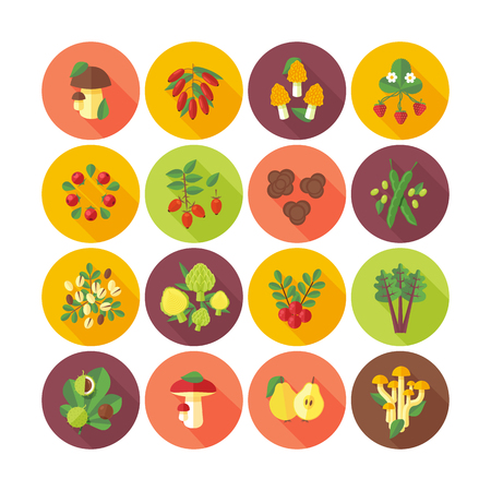 pistachios: Set of flat design icons for fruits and vegetables. Illustration
