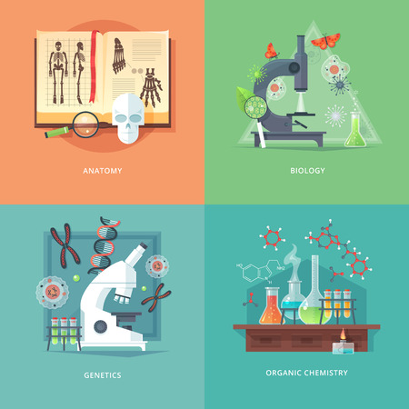 quimica organica: Education and science concept illustrations. Anatomy, biology, genetics and organic chemistry. Science of life and origin of species. Flat vector design banner.