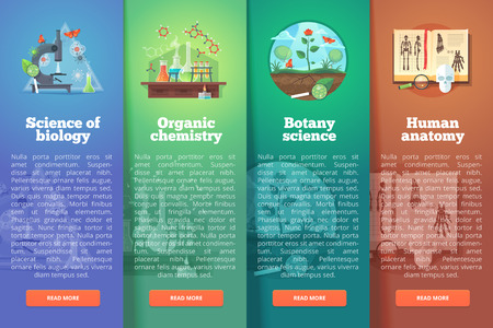 organic chemistry: Science of biology. Organic chemistry. Botany study. Human anatomy. Education and science vertical layout concepts. Flat modern style. Illustration