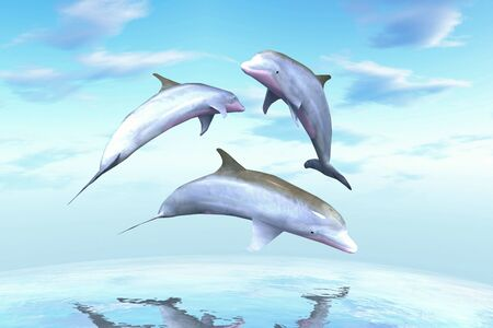 unexplored: Dolphins against a background of the ocean waves. Stock Photo
