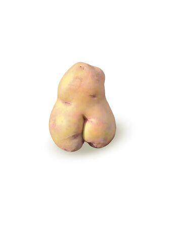 silhouette femme: Pommes de terre d'une forme inhabituelle, pommes de terre sous la forme d'une figure féminine, isolat.