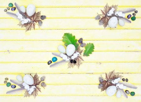 Bird feathers, stones, eggs, oak leaves, acorns, maple leaves on light wooden background on top view.