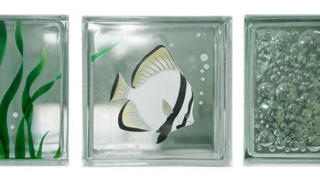 Isolate see through clear square bathroom glass block cube stall panel with Moorish idol fish illustration and circle bubble rough texture pattern .Use for object and material. Array in two grid line. Фото со стока