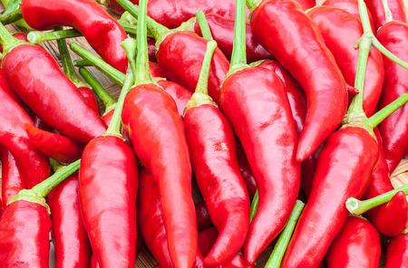 red chilli: Red chilli background