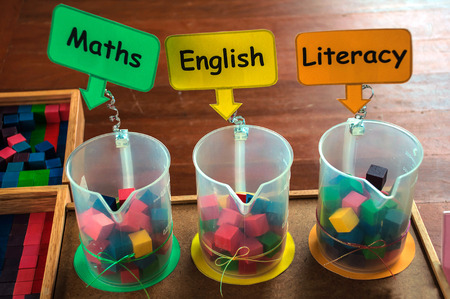 subject: Academic surveying boxes about subject importance among maths english and literacy