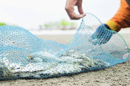 Fisherman is putting fish into the plastic net bag on a beach