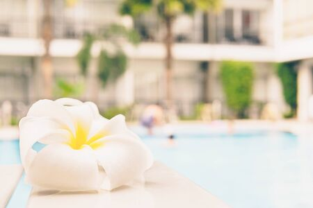 yesteryear: Vintage style photo is white plumeria with water pool background