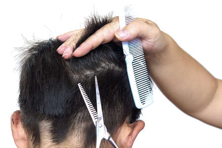A boy is cut his hair by hair dresser isolated over white