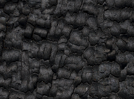 wood surface: Surface of wood charcoal Stock Photo