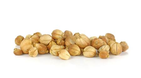 cardamom: Dried Herbs,Amomum krervanh Pierre,Siam Cardamom, Best Cardamom, Clustered Cardamom, Camphor Seed,Zingiberaceae