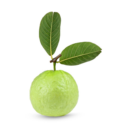 Fresh guava isolated on a white background