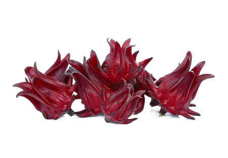 Roselle Hibiscus sabdariffa red fruit flower isolate on white background. 写真素材