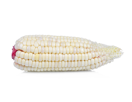fresh corn isolated on white background