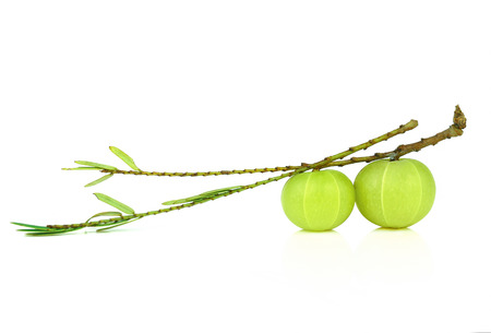 Indian gooseberry isolated on white background 写真素材