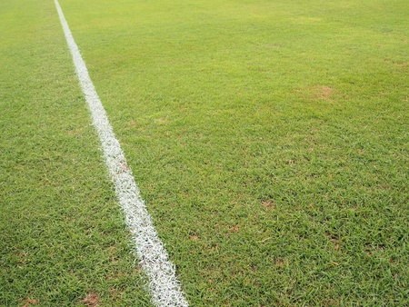 green grass with white line of football field  Stock Photo
