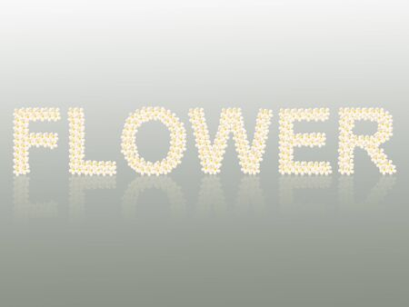 Flower word created from flower photo