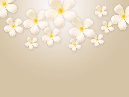 Frangipani design collage photo