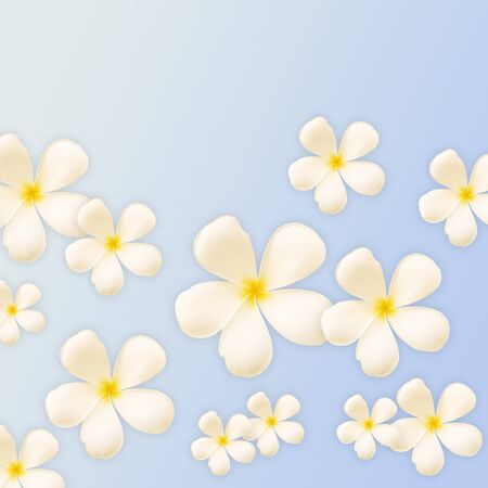 Frangipani design collage on blue background photo