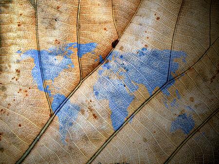 bionics: leaf world map
