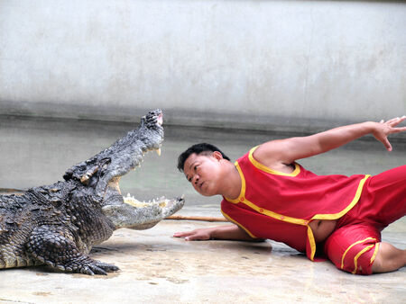 SAMUTPRAKARN,THAILAND -SEPTEMBER 8: crocodile show at crocodile farm on September 8, 2013 in Samutprakarn,Thailand. This exciting show is very famous among among tourist and Thai people