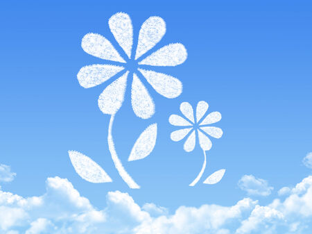 flower concept cloud shape photo