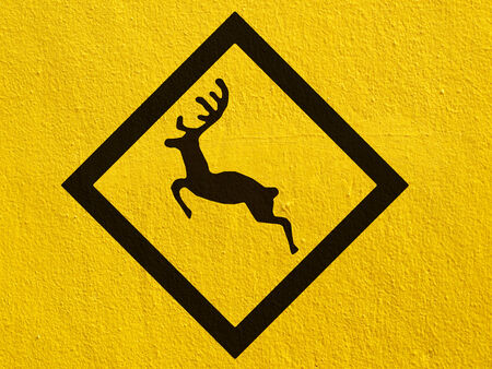 a black Deer traffic warning painted on a stucco wall outside photo