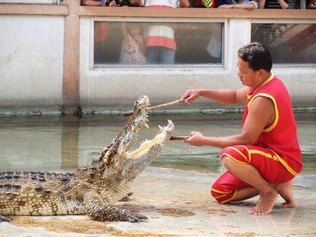 samutprakarn: SAMUTPRAKARN,THAILAND - DECEMBER 21: crocodile show at crocodile farm on December 21, 2013 in Samutprakarn,Thaila nd. This exciting show is very famous among among tourist and Thai people