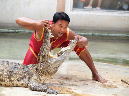 SAMUTPRAKARN,THAILAND - DECEMBER 21: crocodile show at crocodile farm on December 21, 2013 in Samutprakarn,Thaila nd. This exciting show is very famous among among tourist and Thai people