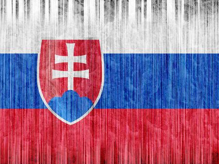 slovakia: Slovakia flag paper texture