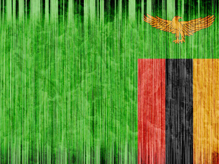 zambia flag: Zambia flag paper texture Stock Photo