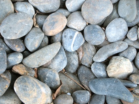 pebble: various pebble stones texture