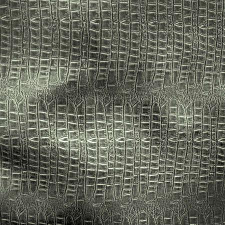 crocodile skin: Vintage crocodile skin