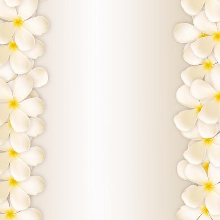 Frangipani design collage Standard-Bild