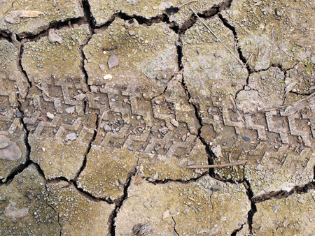 waterless: dry cracked earth background