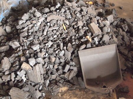 combustible: many pieces of charcoal on the ground