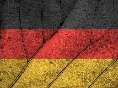 clime: Germany flag leaf texture Stock Photo