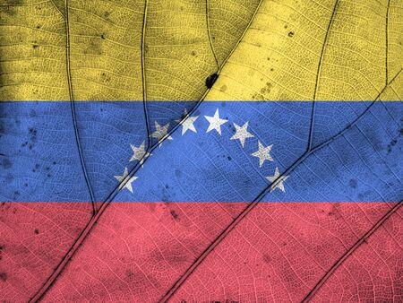 venezuela: Venezuela flag leaf texture Stock Photo