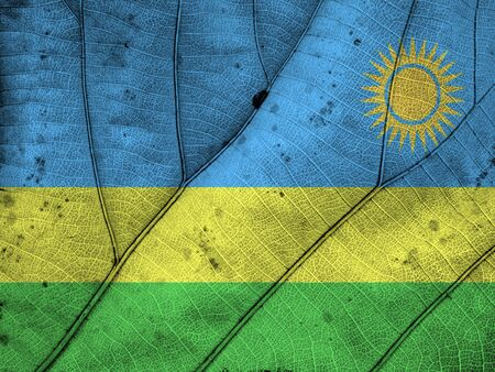 rwanda: Rwanda flag leaf texture