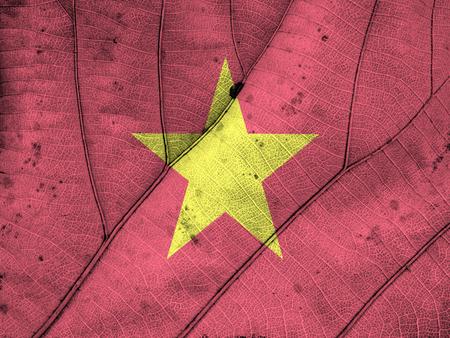 vietnam flag: Vietnam flag leaf texture Stock Photo
