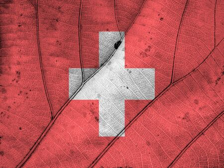 clime: switzerland flag leaf texture