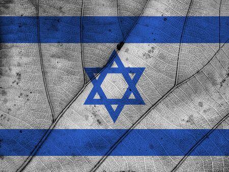 israel flag: Israel flag leaf texture
