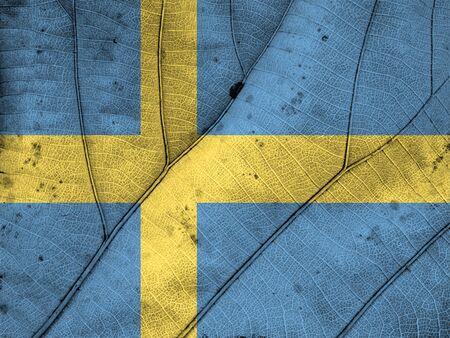 bandera suecia: suecia hoja bandera textura Foto de archivo