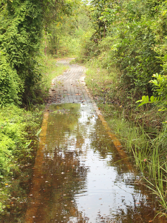 hight: Rural road covered by hight water during flood