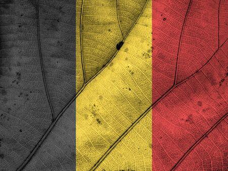 belgium flag: Belgium flag leaf texture