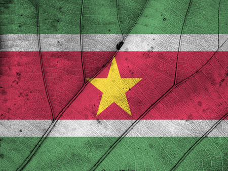 clime: Suriname flag leaf texture Stock Photo