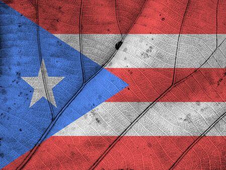 rico: Puerto Rico flag leaf texture